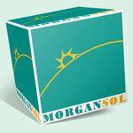 MORGAN SOL