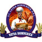 VATRA DOMNEASCĂ